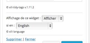 Choix de visibilité des widgets
